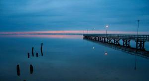 Pier and Pilings