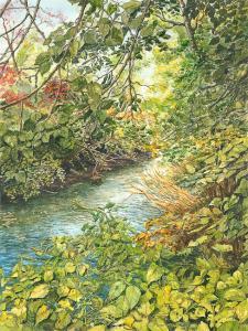 Many Mind Creek