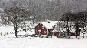 010 susan boston snowing in navesink