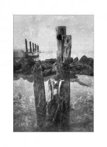 038 geri gray ferry dock sandy hook