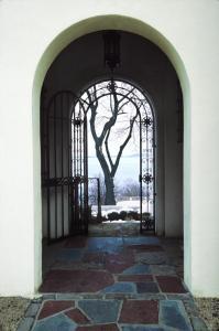 002 diane ali photography tree through archway