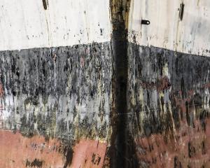 075 frank parisi photography rusty bow