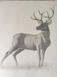 077 kenneth pesile painting buck