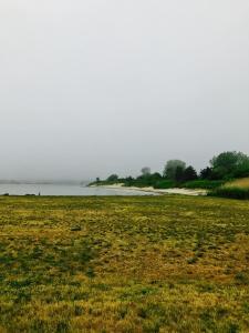 104 david wozniak photography ocean fog