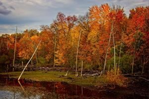 052_michael_menendez_photography_fall-view-from-georgia-tavern-road