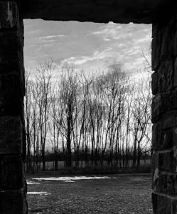 070_jeff_ricci_photography_winterview