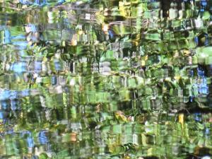 080_ellen_rubinstein_photography_green-on-blue
