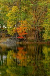 146_photography_peaceful autumn