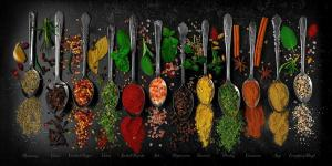 165_photography_spoons and spices