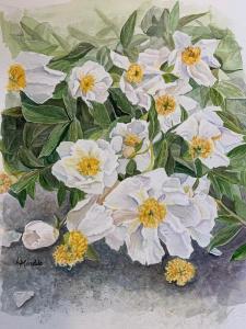 White Peony Garden