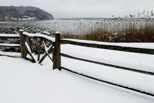 Gate in Snow, Hartshome