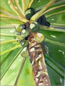 Papayan Palm