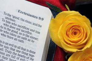004 debora bruno ecclesiastes 9