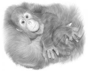 040 jacqueline jamison clinging to mama