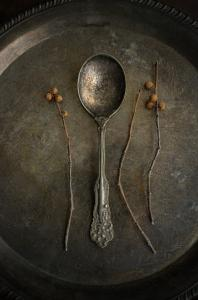 099 jenifer rutherford twig and spoon still life