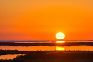 116 audrey vasey sunrise over the salt marsh