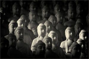 023 vicki devico a thousand buddhas