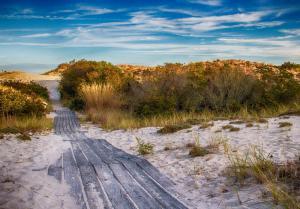 027 ave doyle ocean dune path