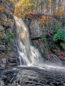 035 joel goldberg bushlill falls