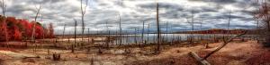 072 michael menendez wasteland manasquan reservoir