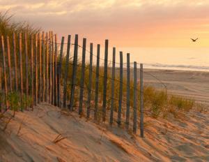 029 bob dowd daybreak on the dunes