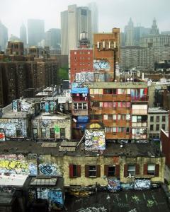 082 rosemarie reinman inner city gallery