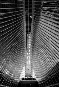 082 stephen ravner oculus and freedom tower