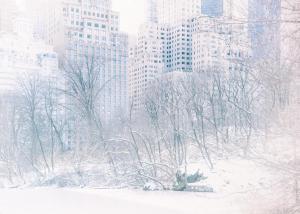 097 irina shoyhet winter cityscape