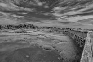 31 richard huff photography reflections of assateague island