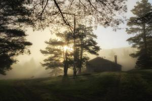 44 joe matzerath photography misty morning