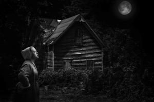 045 helen mcandrew moonlight mystery