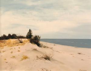 026 johanna ericson painting hidden dune