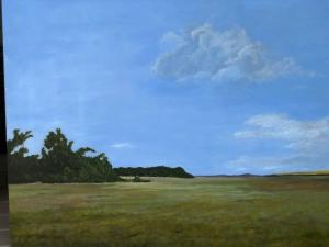 068 kenneth pesile painting open field