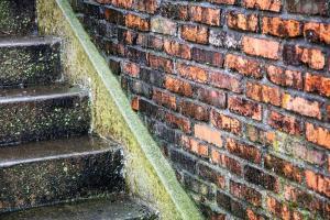 051 michael marino steps and bricks
