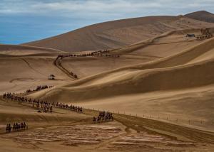 006 marilyn baldi camel caravan