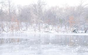 244 irina shoyhet winter fantasy
