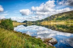 078_monte_pellmar_irish_reflections